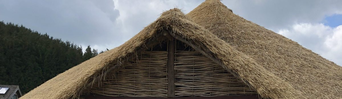 Year 3 – Butser Ancient Farm – Monday 29th April 2019